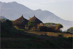 Landscape with wooden huts, Ethiopia image
