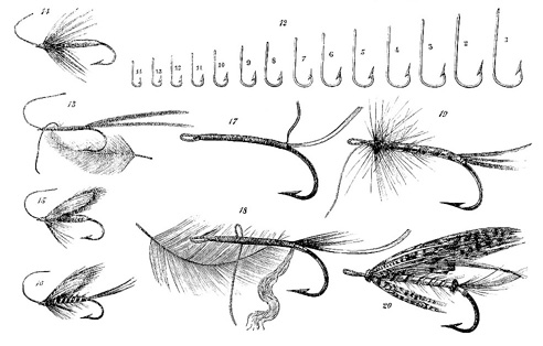Hooks and Lures image