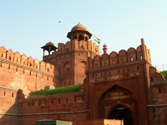 Red Fort, Delhi image