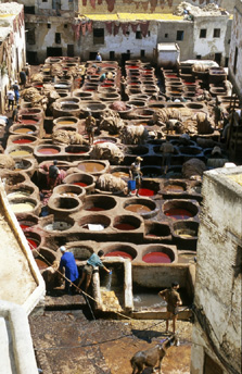 Leather tannery, Fez, Morocco image