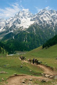 Himalayas, Kashmir image