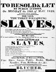 Slave Sale Poster image