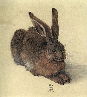 A Young Hare (by Albrecht Durer) (image)
