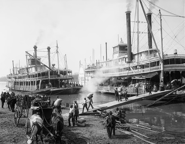 Mississippi riverboats, Memphis, TN, 1906 (image)